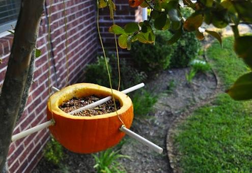 PumpkinBirdFeeder-themotherhuddle
