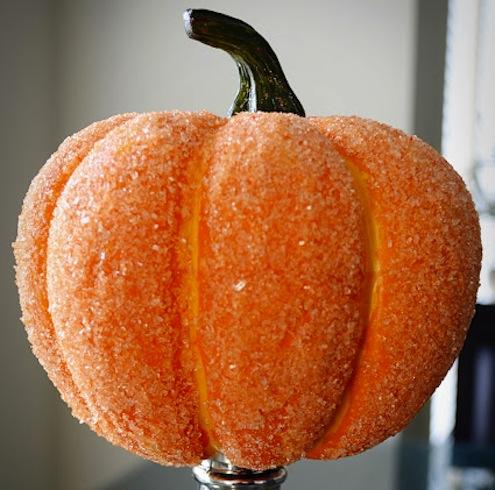 PumpkinSalt-davisdaybyday