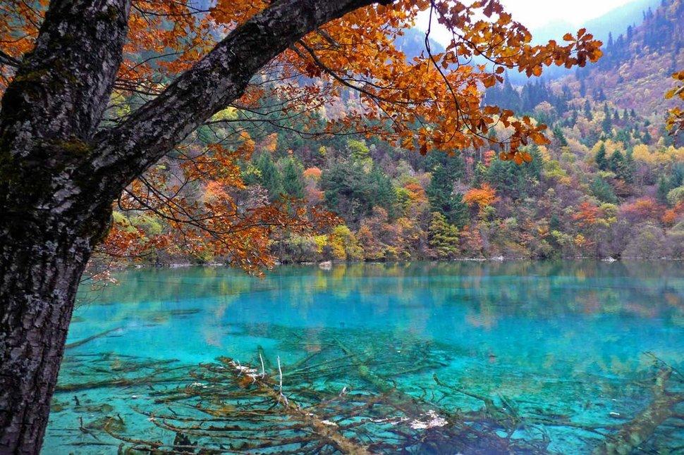 five-flower-lake