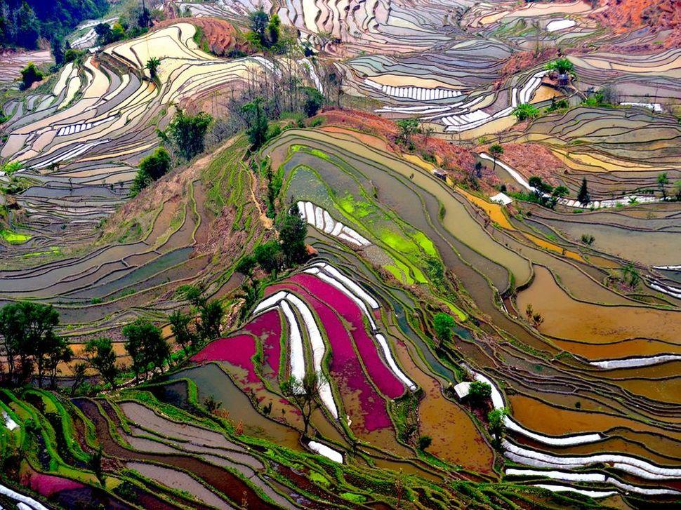 yuanyang-china