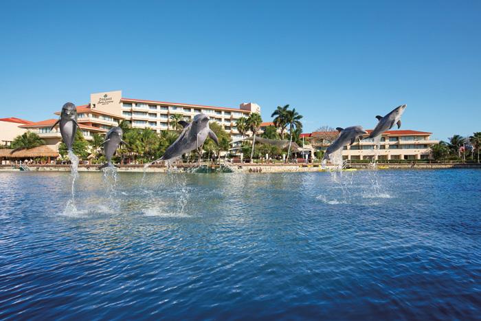 Dreams Puerto Aventuras Resort Spa Dolphins