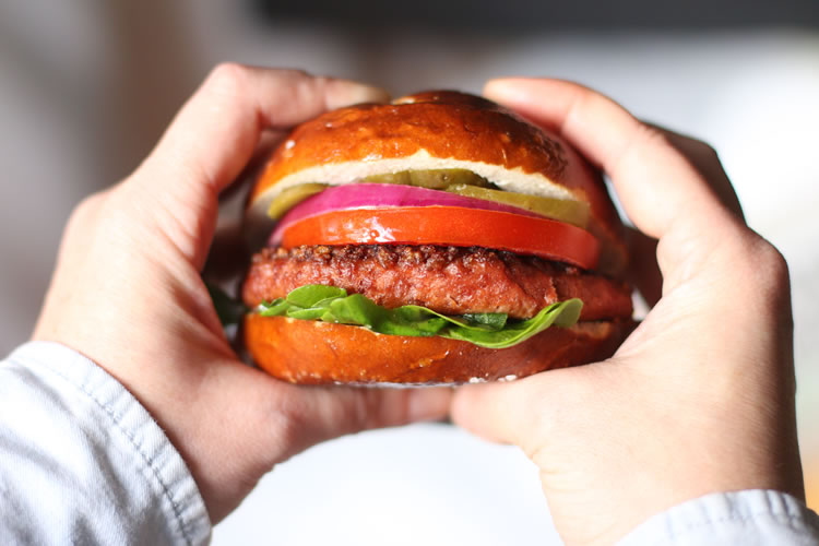Beyond Meat Plant Based Vegetarian Burger