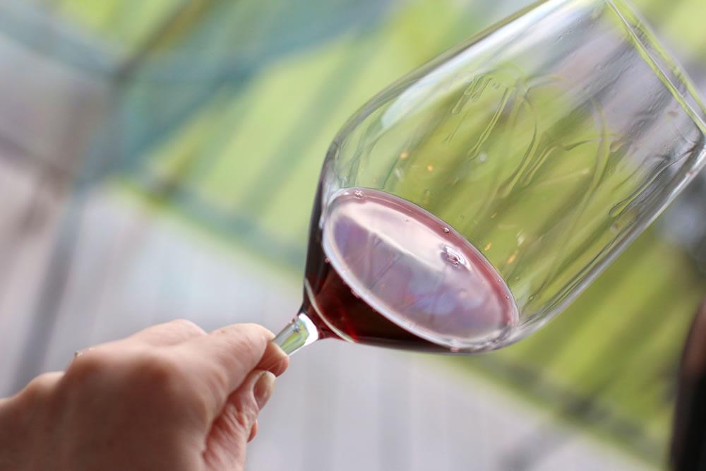 une main tenant un verre de vin rouge avec des jambes devant une fenêtre