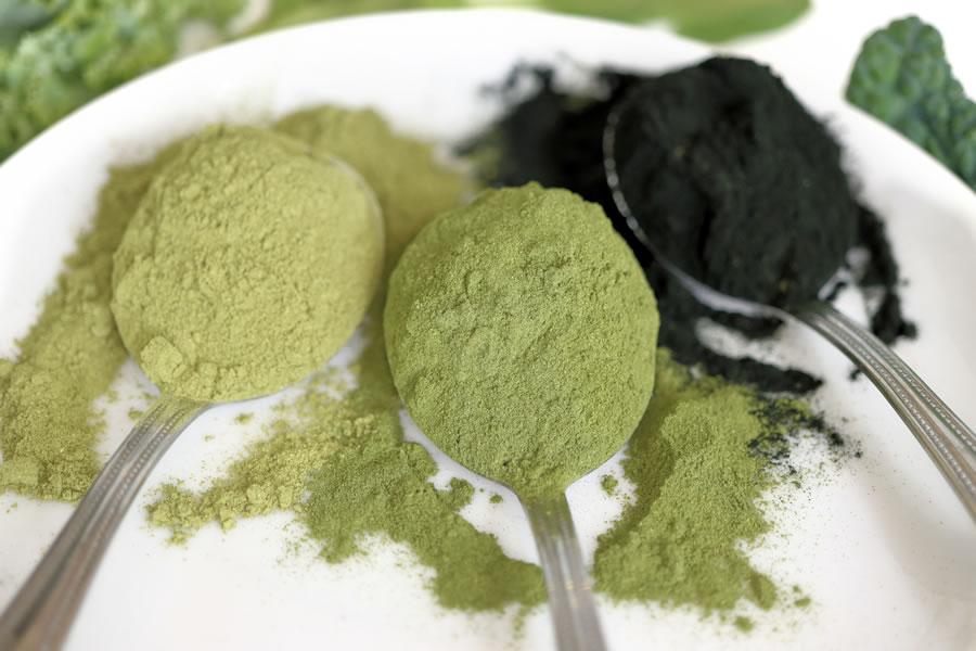 spoons of moringa leaf powder wheat grass powder and spirulina powder